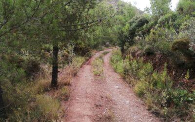 Reparación del camino de acceso al observatorio del Cerro de la Mata